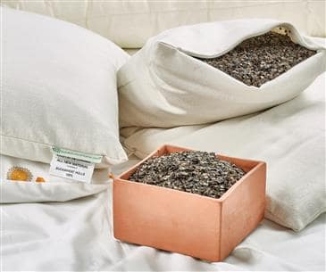 White Lotus Home Buckwheat Sleep Pillows