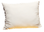 White Lotus Home Green Cotton Sleep Pillows